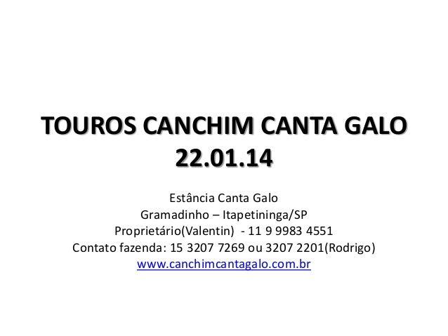TOUROS CANCHIM CANTA GALO 22.01.14 Estância Canta Galo Gramadinho – Itapetininga/SP Proprietário(Valentin) - 11 9 9983 455...