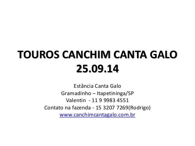 TOUROS CANCHIM CANTA GALO  25.09.14  Estância Canta Galo  Gramadinho – Itapetininga/SP  Valentin - 11 9 9983 4551  Contato...