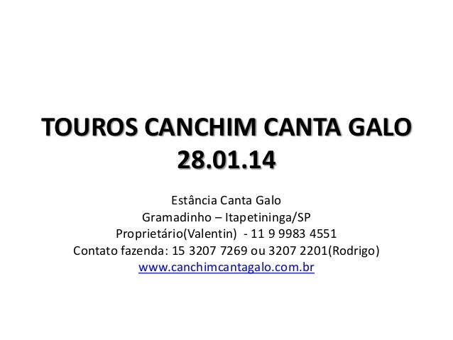 TOUROS CANCHIM CANTA GALO 28.01.14 Estância Canta Galo Gramadinho – Itapetininga/SP Proprietário(Valentin) - 11 9 9983 455...