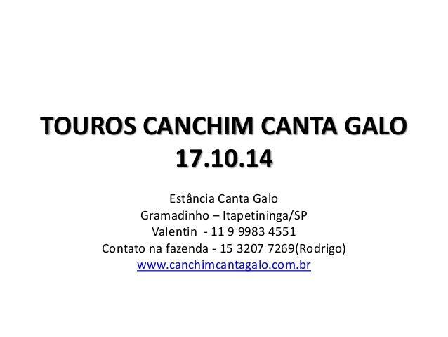 TOUROS CANCHIM CANTA GALO  17.10.14  Estância Canta Galo  Gramadinho – Itapetininga/SP  Valentin - 11 9 9983 4551  Contato...