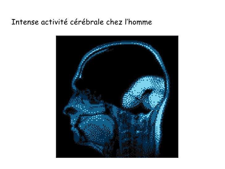 Intense activité cérébrale chez l'homme