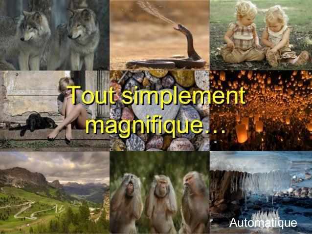 Tout simplementTout simplement magnifique…magnifique… ... Automatique