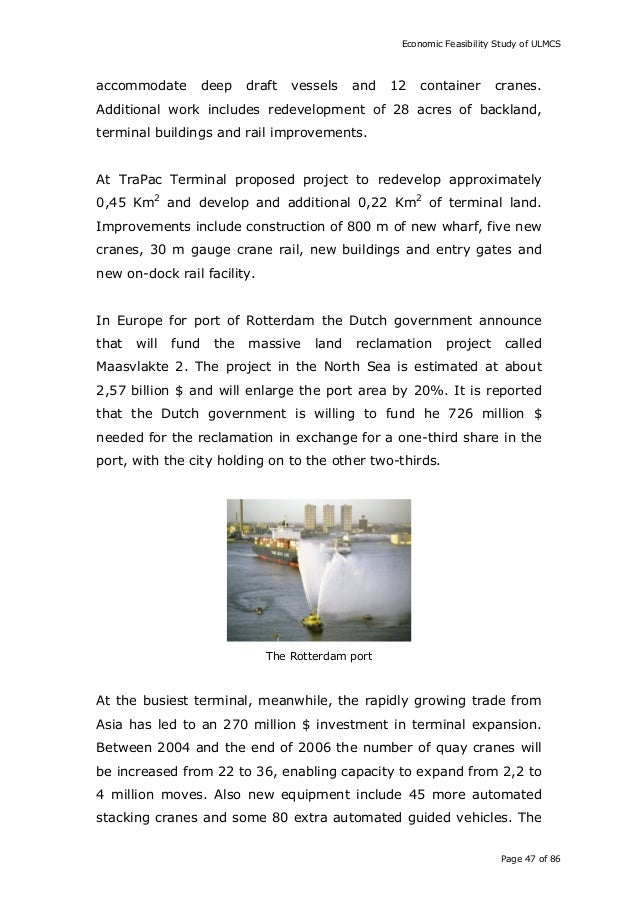 cranes thesis paper