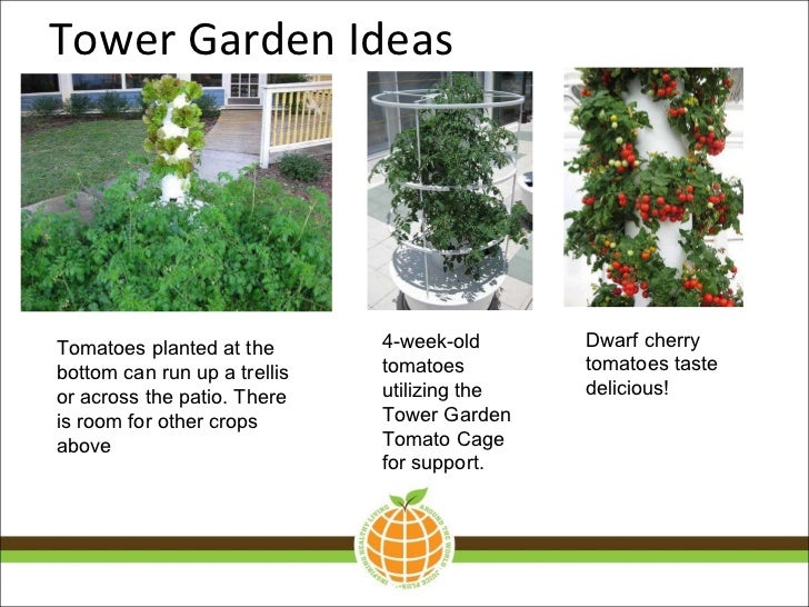 Tower Garden IdeasTomatoes ...