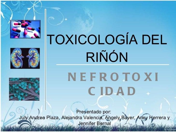 TOXICOLOGÍA DEL RIÑÓN NEFROTOXICIDAD Presentado por:  July Andrea Plaza, Alejandra Valencia, Angely Bayer, Arley Herrera y...