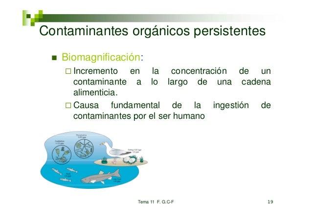 Co taContaminantes orgánicos pe s ste tes        a tes o gá cos persistentes   Biomagnificación:     Incremento en la conc...