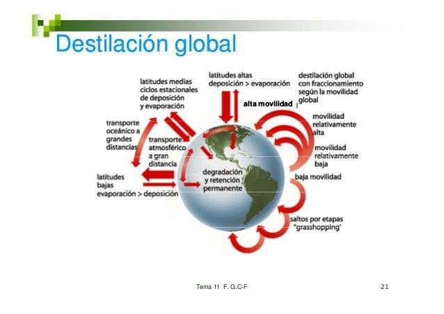 Destilación global                           alta movilidad             Tema 11 F. G.C-F               21