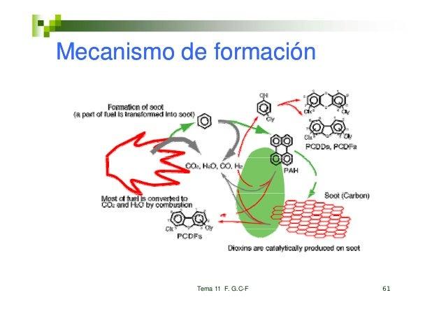 Mecanismo de formación           Tema 11 F. G.C-F   61