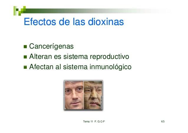 Efectos de las dioxinas Cancerígenas Alteran es sistema reproductivo Afectan al sistema inmunológico                 Tema ...