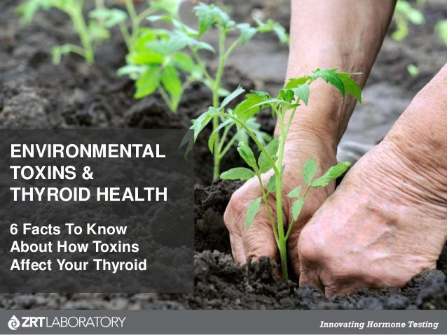 ENVIRONMENTAL TOXINS & THYROID HEALTH 6 Facts To Know About How Toxins Affect Your Thyroid