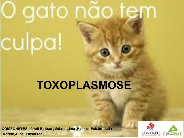TOXOPLASMOSE  COMPONETES :Yarali Batista ,Maiara Lima ,Poliana Paixão ,Adla ,Karine,Aline ,Elivanilda,