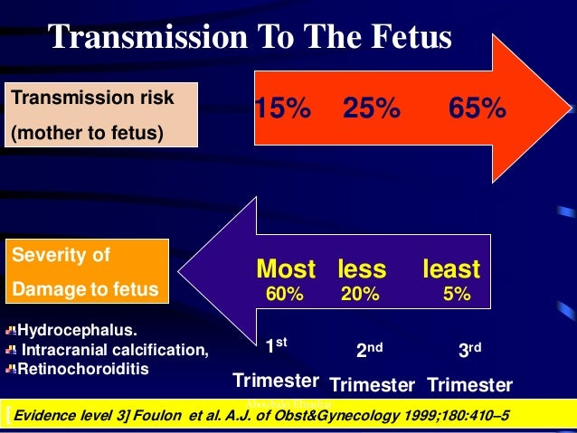 Toxoplasmosis in pregnancy