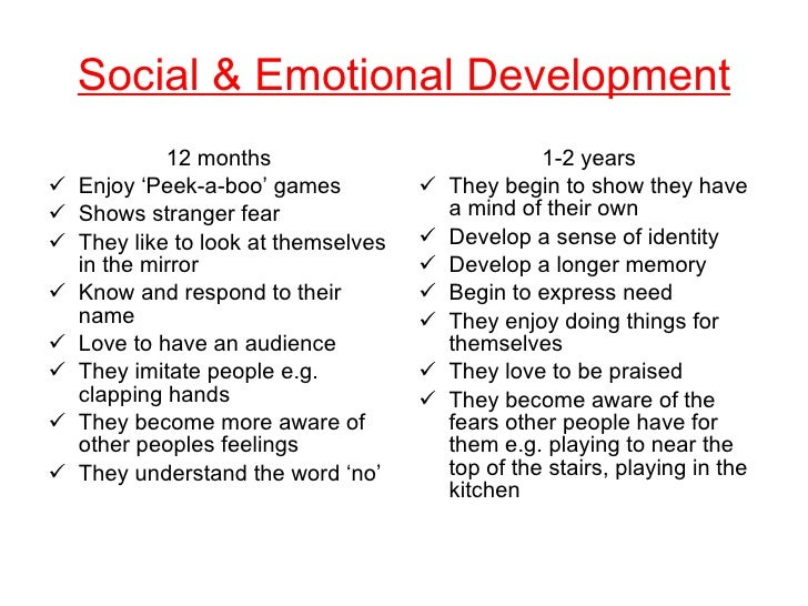 Assignment 2 – Social and Emotional Development Essay
