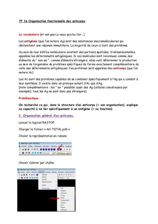 TP 16 Organisation fonctionnelle des anticorps.Le vocabulaire (et non pas Le veau qu'a bu l'air…)Les antigènes (que l'on n...