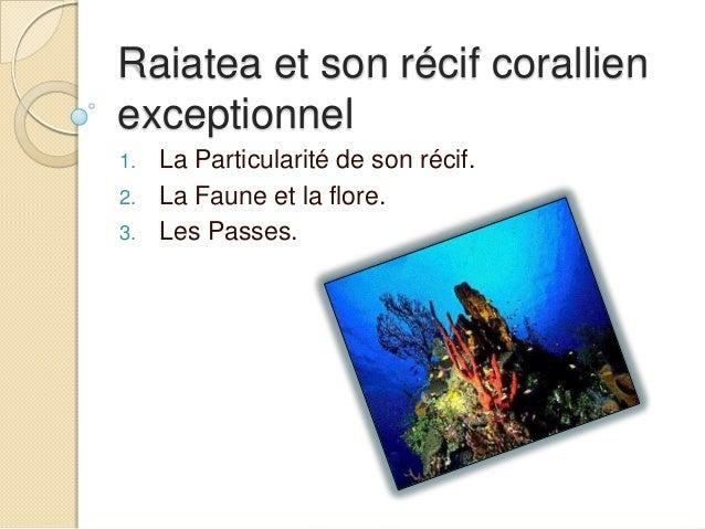 Raiatea et son récif corallienexceptionnel1.   La Particularité de son récif.2.   La Faune et la flore.3.   Les Passes.