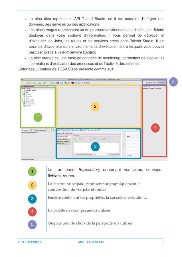 • Le bloc bleu représente l'API Talend Studio, où il est possible d'intégrer des données, des services ou des applications...
