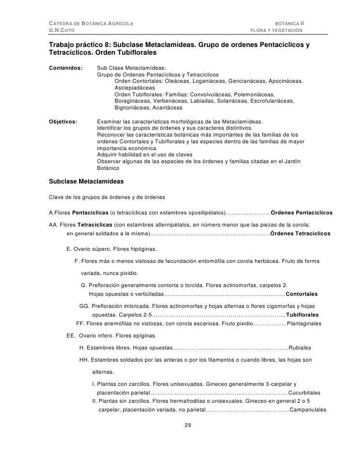 CÁTEDRA DE BOTÁNICA AGRÍCOLA                                                             BOTÁNICA II U.N.CUYO             ...