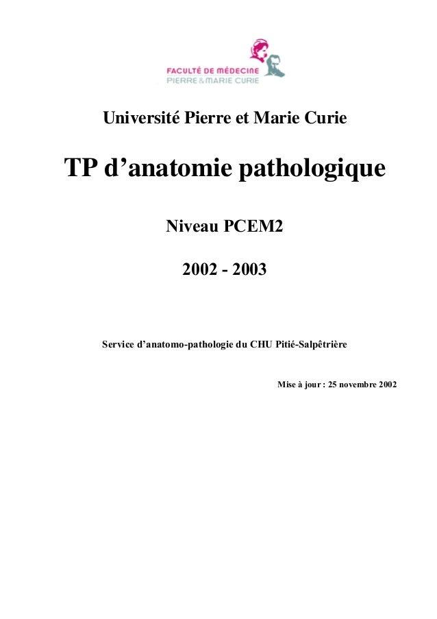 Université Pierre et Marie Curie  TP d'anatomie pathologique Niveau PCEM2 2002 - 2003  Service d'anatomo-pathologie du CHU...