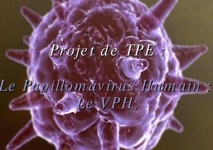Projet de TPE : Le Papillomavirus Humain :  Le VPH.
