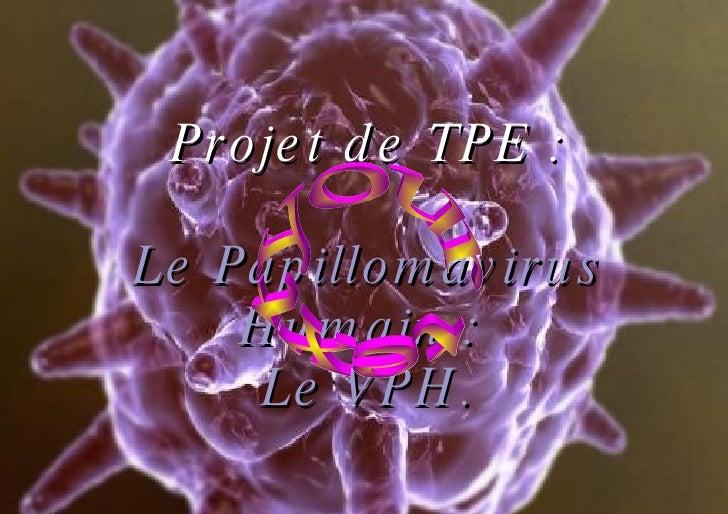 Projet de TPE : Le Papillomavirus Humain :  Le VPH. your text