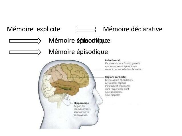 Problème de mémoire épisodique
