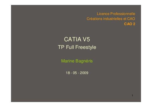 1 CATIA V5 TP Full Freestyle Marine Bagnéris 18 - 05 - 2009 Licence Professionnelle Créations industrielles et CAO CAO 2