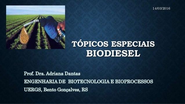TÓPICOS ESPECIAIS BIODIESEL Prof. Dra. Adriana Dantas ENGENHARIA DE BIOTECNOLOGIA E BIOPROCESSOS UERGS, Bento Gonçalves, R...
