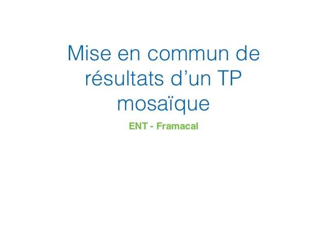 Mise en commun de résultats d'un TP mosaïque ENT - Framacal