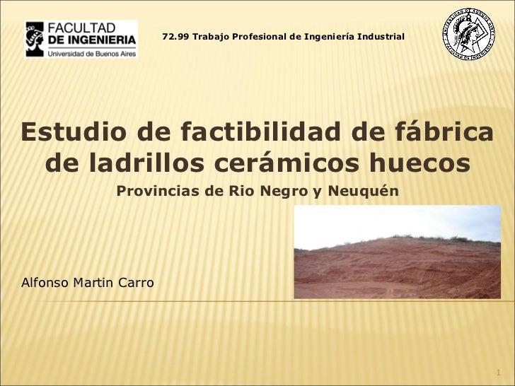 Estudio de factibilidad de fábrica de ladrillos cerámicos huecos Provincias de Rio Negro y Neuquén Alfonso Martin Carro 72...