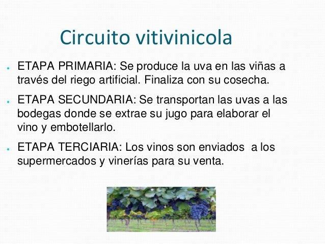 Circuito Productivo Del Vino : Espacios rurales lautaro toranzo ºa ppsx