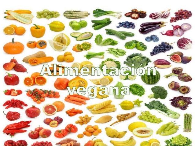 Abstención de productos de origen animal Alimentación Vestimenta/ decoración Deportes/ ocio Transporte Productos testeados...