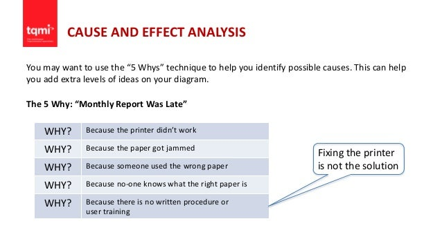 structure in research paper reports