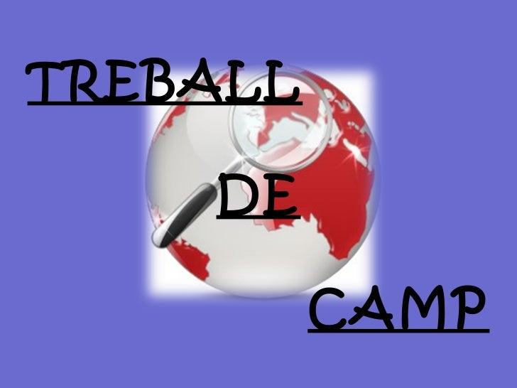 TREBALL DE CAMP