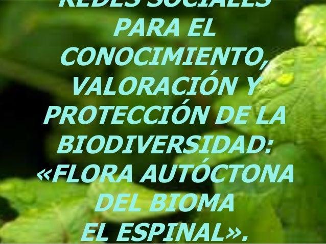 REDES SOCIALES PARA EL CONOCIMIENTO, VALORACIÓN Y PROTECCIÓN DE LA BIODIVERSIDAD: «FLORA AUTÓCTONA DEL BIOMA EL ESPINAL».