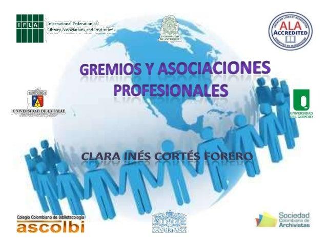 Los gremios y asociaciones profesiones son todas aquellas asociaciones conformadas jurídicamente, en algunos casos la mayo...