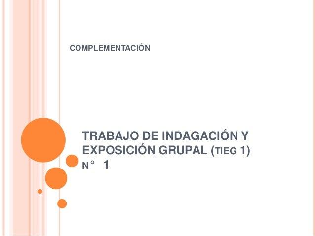 COMPLEMENTACIÓN  TRABAJO DE INDAGACIÓN Y EXPOSICIÓN GRUPAL (TIEG 1) N° 1