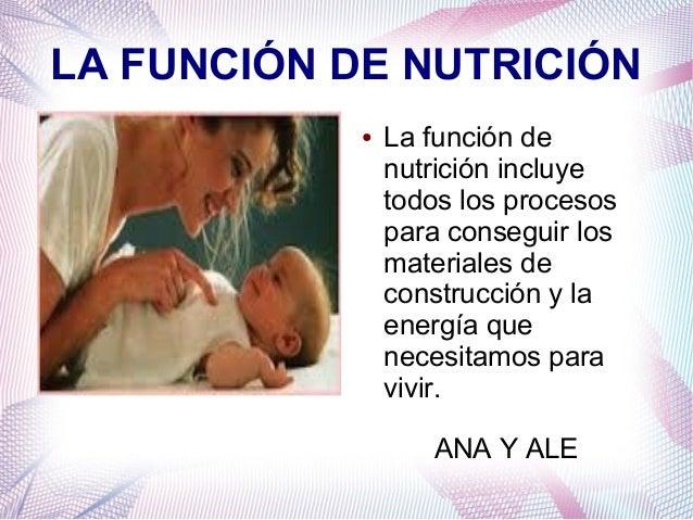 LA FUNCIÓN DE NUTRICIÓN ●  La función de nutrición incluye todos los procesos para conseguir los materiales de construcció...