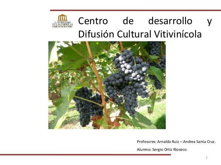 Centro de desarrollo y Difusión Cultural Vitivinícola Profesores: Arnaldo Ruiz – Andrea Santa Cruz. Alumno: Sergio Ortiz R...