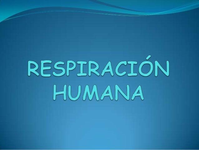 La respiración La respiración es el proceso mediante el que obtenemos el oxígeno que  necesitan nuestras células para fun...