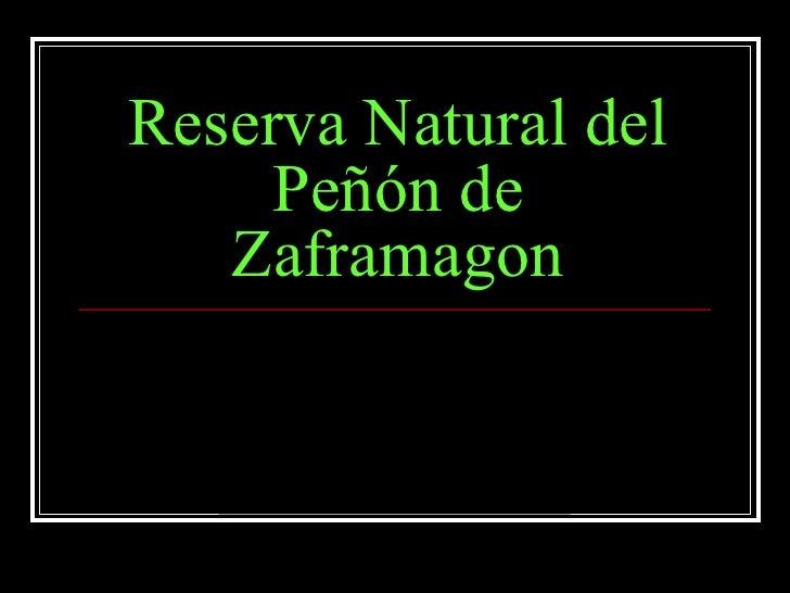 Reserva Natural del Peñón de Zaframagon