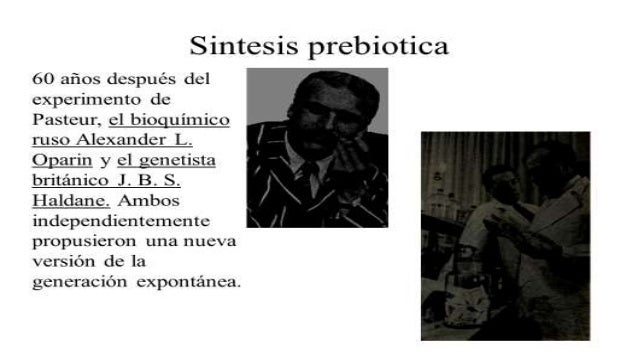 Teoría endosimbiótica