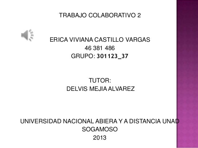 TRABAJO COLABORATIVO 2  ERICA VIVIANA CASTILLO VARGAS 46 381 486 GRUPO: 301123_37  TUTOR: DELVIS MEJIA ALVAREZ  UNIVERSIDA...