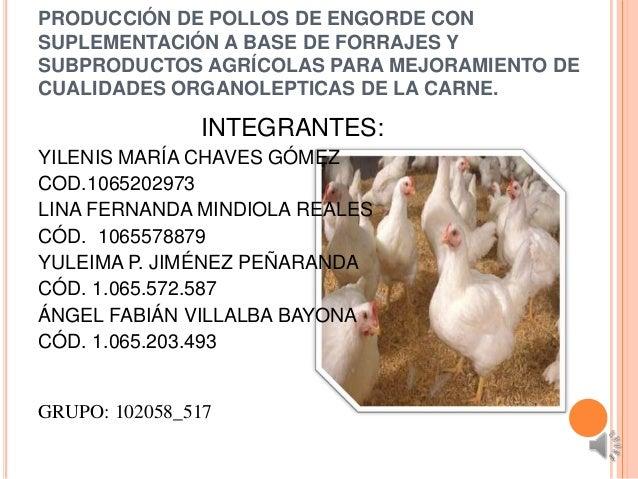 PRODUCCIÓN DE POLLOS DE ENGORDE CONSUPLEMENTACIÓN A BASE DE FORRAJES YSUBPRODUCTOS AGRÍCOLAS PARA MEJORAMIENTO DECUALIDADE...