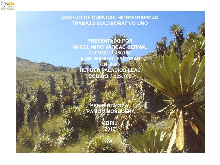 MANEJO DE CUENCAS HIDROGRÁFICAS   TRABAJO COLABORATIVO UNO       PRESENTADO POR   ANGEL MIRO VARGAS BERNAL        CODIGO: ...
