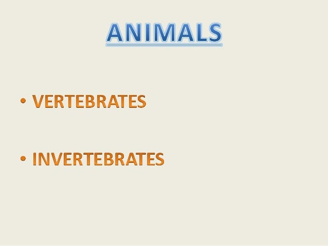 LESSON PLANNING•   TOPIC: ANIMALS, VERTEBRATES AND INVERTEBRATES•   LEVEL: 3RD COURSE PRIMARY EDUCATION•   TIME: 10 SESSIO...
