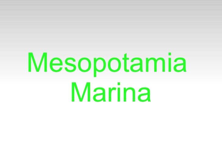 Mesopotamia  Marina