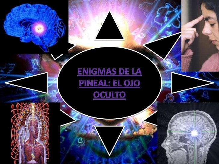 Enigmas de la pineal: el ojo oculto<br />