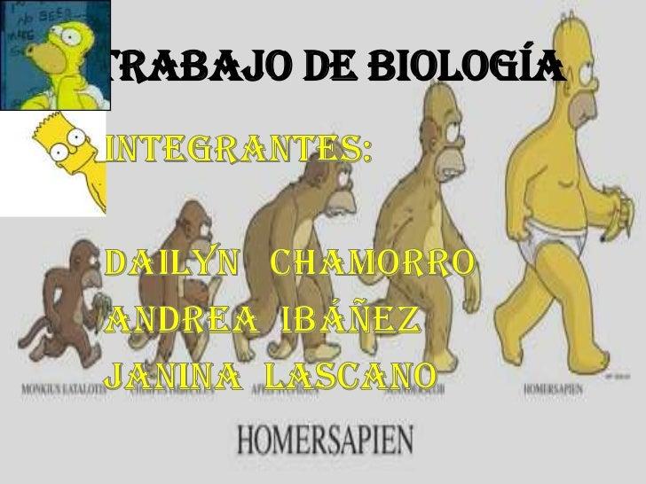 TRABAJO DE BIOLOGÍA <br />Integrantes:<br />Dailyn   Chamorro<br />Andrea  Ibáñez<br />Janina  Lascano<br />