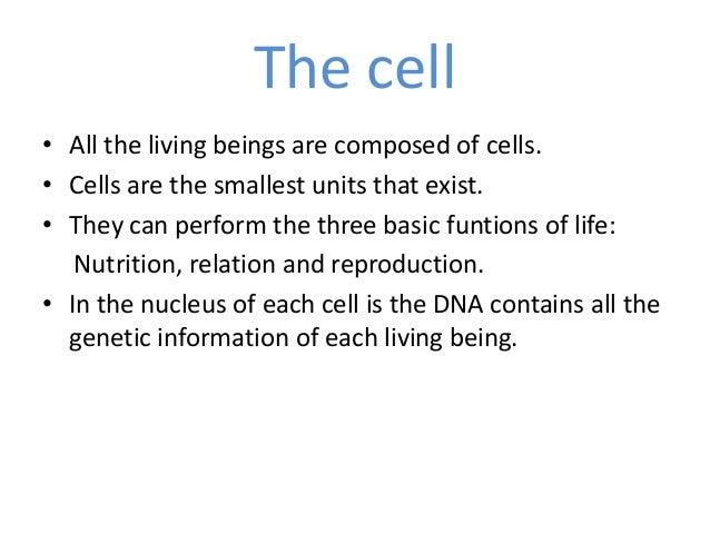 Trabajo de biología azul Slide 3