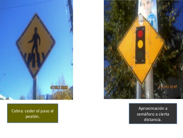 Cebra: ceder el paso al peatón. Aproximación a semáforo a cierta distancia.